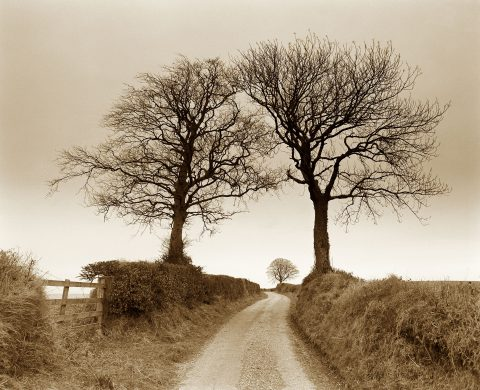Road to Beacon Hill © John Melville